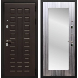 Дверь Армада Триумф 3К с Зеркалом Пастораль (Венге / Сандал серый)